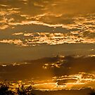 Sunset in Gold by Linda Sparks