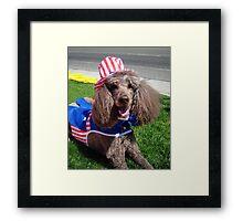Yankee Doodle Poodle Framed Print