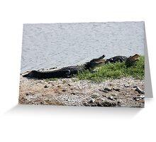 Alligators Open Wide Greeting Card