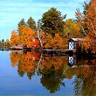 Autumn in Manitoba by Larry Trupp