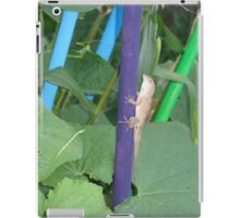 Lizard in a garden iPad Case/Skin