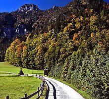 Pathway near Berchtesgaden, Germany by David J Dionne