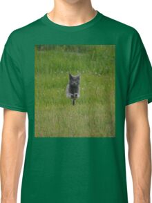 Bounding Grey Farm Cat Returns Home Classic T-Shirt