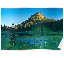 Dawn on Yakima Peak Poster