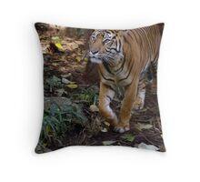 Sumatran Tigress Throw Pillow