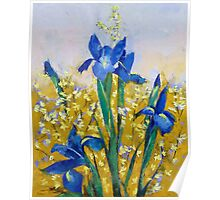 Iris and Forsythia Poster