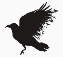 Crow - flying crow by Sandra O'Connor