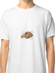 PRETTY DOG Classic T-Shirt