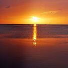 Florida Gulf Sunset by Colleen Rohrbaugh