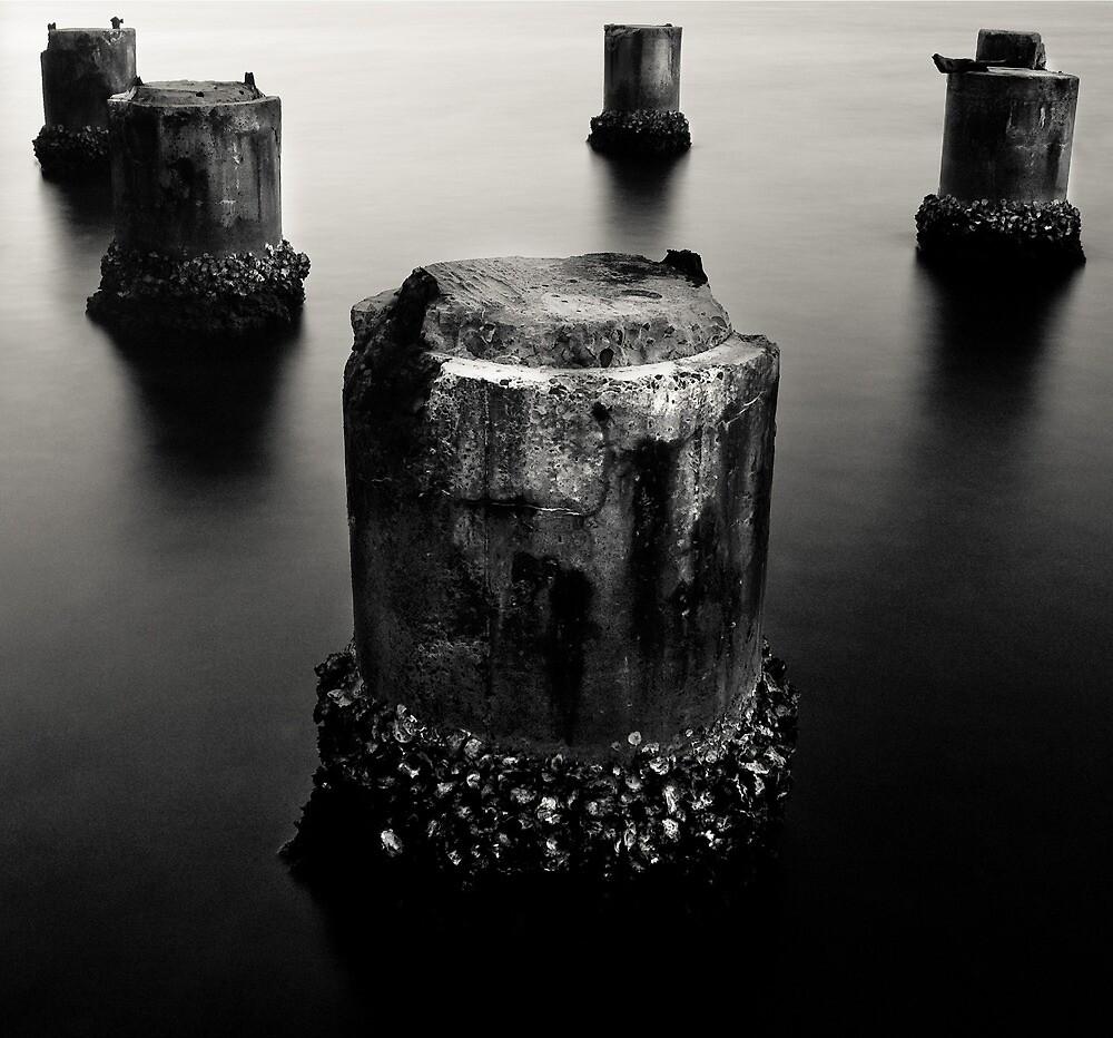 Old Men of the Lake by Tim Boehm