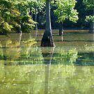 Cox Cypress Reflections by WildestArt