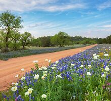 Bluebonnets along a Dirt Road in the Texas Hill Country by RobGreebonPhoto