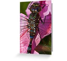 Drunk on Petunia Greeting Card