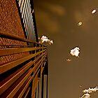 Stairway to Heaven by Lauren Hendricks