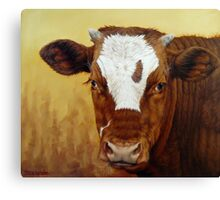 Rusty Red Calf Canvas Print