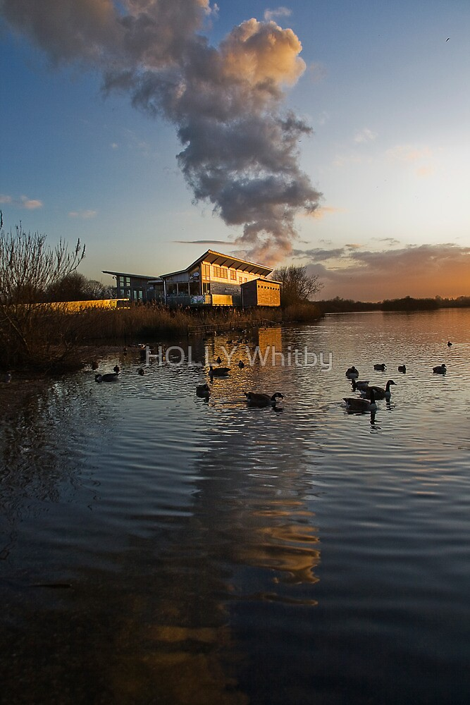 Attenborough Sunset, looking over the Lake  by Elaine123
