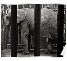 Imprisonment Poster