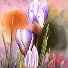Three Crocuses by Anne Sainz