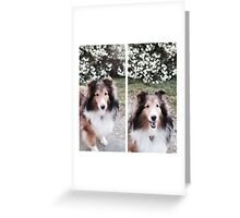 Lovely Liza Greeting Card