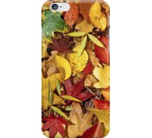 Nature's carpet, fall for Autumn iPhone Case/Skin