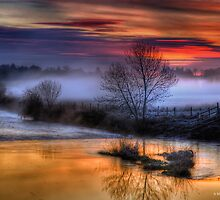 Eyebridge Mist by banny