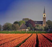 Holland in Spring by Jo Nijenhuis