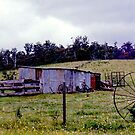 Old Corral near Trunkey Creek, NSW, Australia  by C J Lewis
