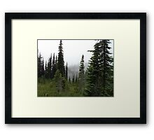 Mountain Forest - snow grass flats Framed Print