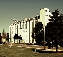 Hiram Walker Silos   by Barry W  King
