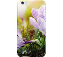 Crocus Easter Flowers iPhone Case/Skin