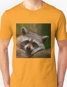 Raccoon Face T-Shirt