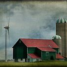 Ontario Farm by Nancy Bray