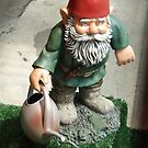 Gnome Alone by DarylE