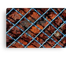 Vintage net background of rusty iron net Canvas Print