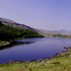 Llynnau Mymbyr Panorama by Mark Wilson