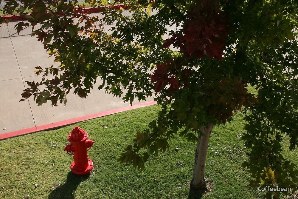 Little Red Fireman by coffeebean