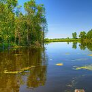 Horicon National Wildlife Refuge-2 by ECH52