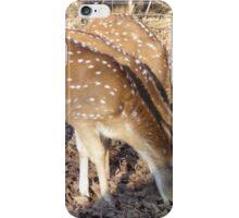 Deer, Lets eat ! iPhone Case/Skin