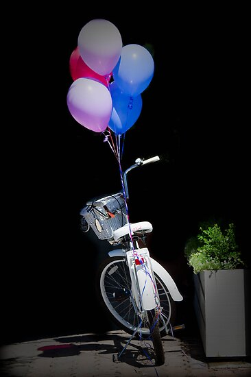 Birthday Bicycle by geoff curtis