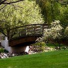 Dry River Bridge by Robin Webster