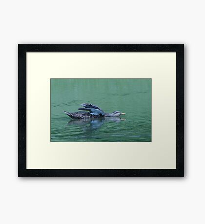 Feeling Good................ Framed Print