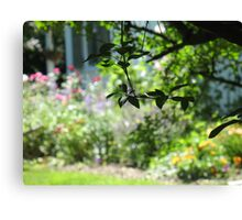The Leaves of Summer Canvas Print