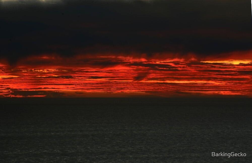 Inside the Sunset by BarkingGecko