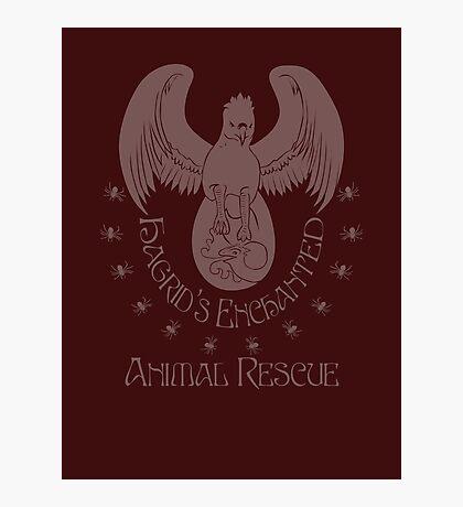 Hagrid's Enchanted Animal Rescue Photographic Print