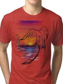 Toothless Sunset Tri-blend T-Shirt