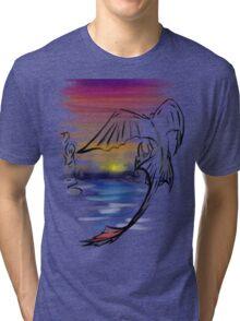 Toothless Sunset Tri-blend T-Shirt