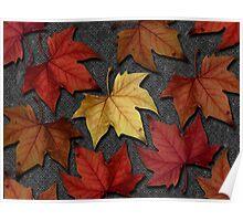 Autumn Leaves I Poster