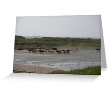 Nude Bathers, Innisfree Island off Donegal Ireland Greeting Card