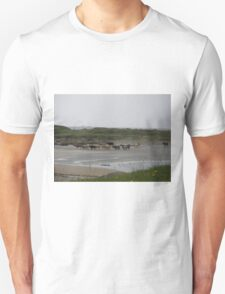 Nude Bathers, Innisfree Island off Donegal Ireland T-Shirt