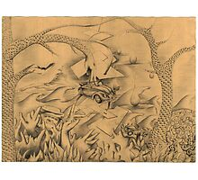 Doodle Bug Photographic Print